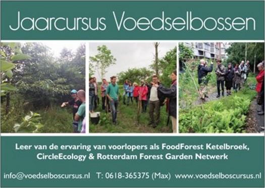 Voedselbos jaarcursus 2018