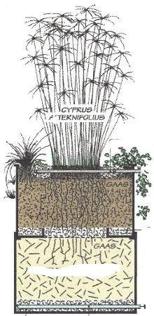 Natuurlijke waterzuivering voor in huis