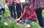 start cursus Voedselbosrand, ook in kleinere tuinen