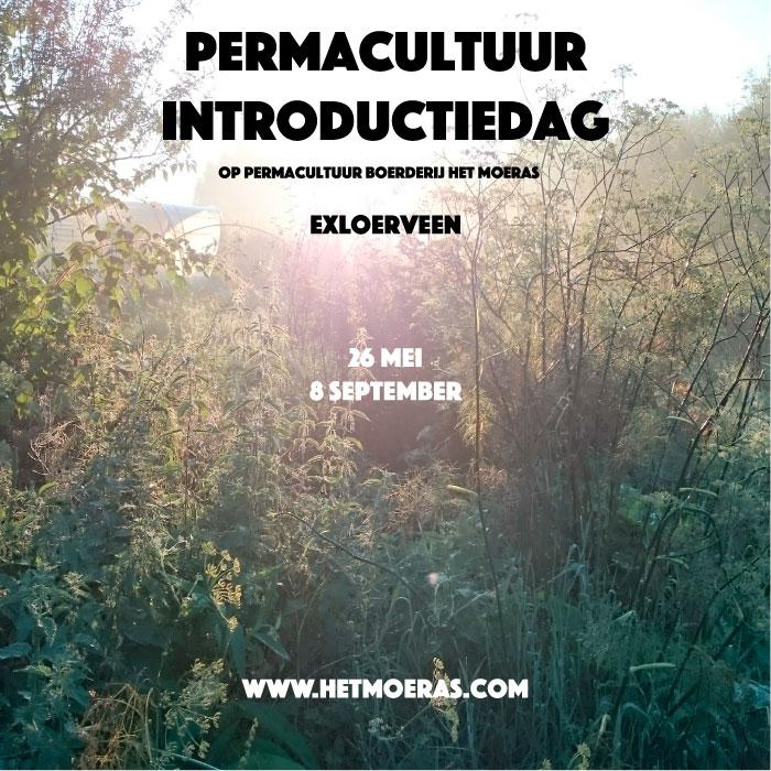Permacultuur introductiedag