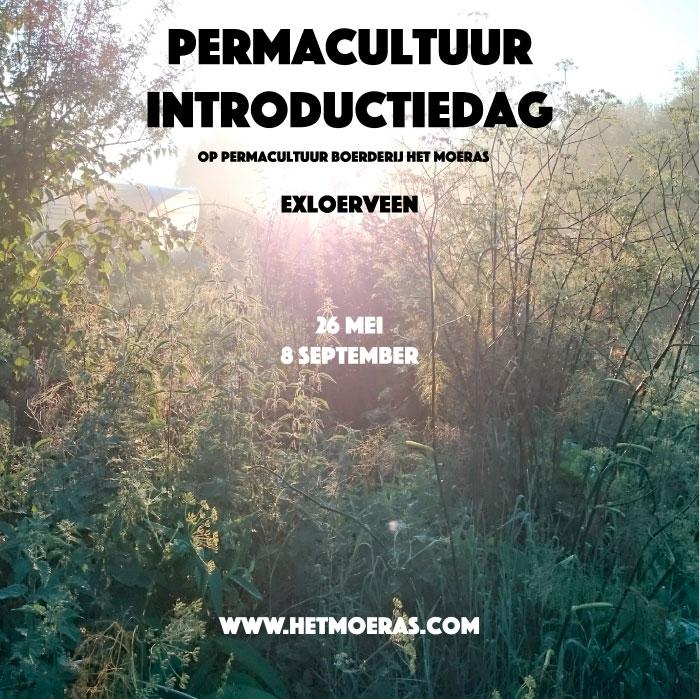 Permacultuur introductie cursus