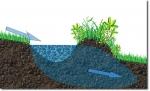 Watermanagement in Permacultuur en Voedselbos