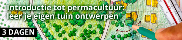 Introductie tot permacultuur: leer je eigen tuin ontwerpen