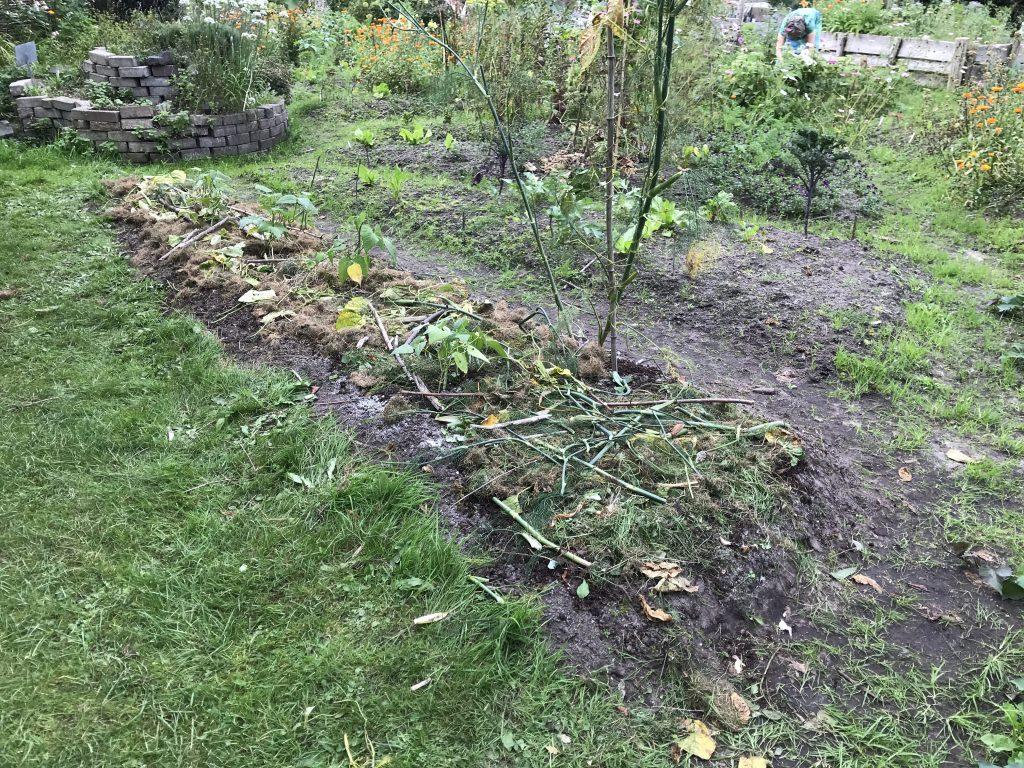 """Online cursus: """"Je tuin winterklaar maken"""""""